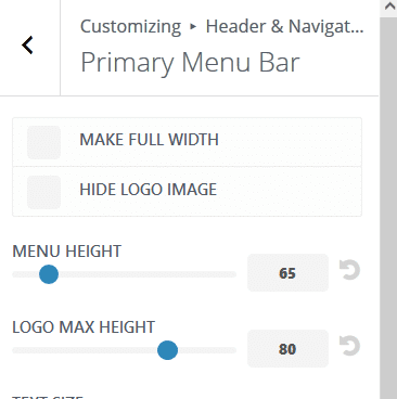 Step 4 - divi logo settings