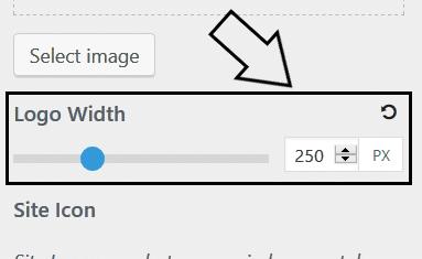 Step 4 - generatepress logo width