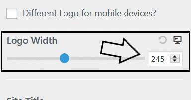 Step 6 - astra logo width